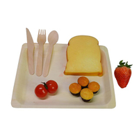 Disposable tableware WP1026