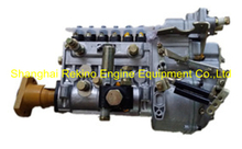 BP5144 612600081178 Longbeng fuel injection pump for Weichai WD618
