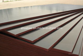 18mm Marine Plywood /Playwood with Poplar Core 4*8 Size