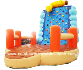 RB13016(5x5x5m) Inflatable Climbing Wall Game/ Inflatable Climbing Wall Bouncer