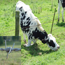 Cattle farm protection double strands 4 points Barb barbed wire