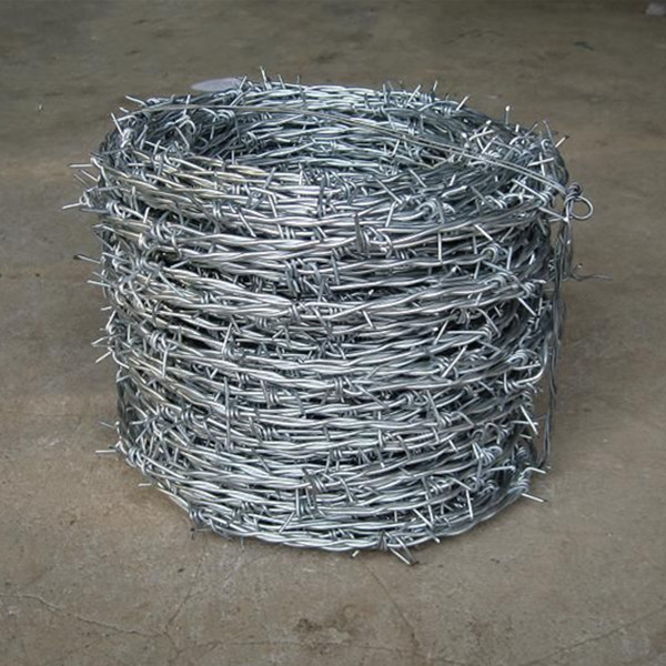 JS-barbed wire (12)