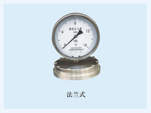 PG-002 Diaphragm Chemical Seal low Pressure Gauge with flange connection