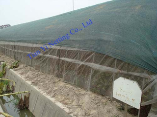 Anti Wind Net