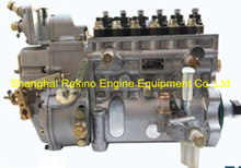 BP51E8 13059429 Longbeng fuel injection pump for Weichai WP6
