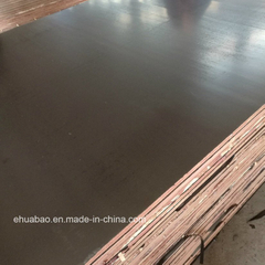 Eucalyptus Core Film Faced Plywood WBP Glue Brown Film