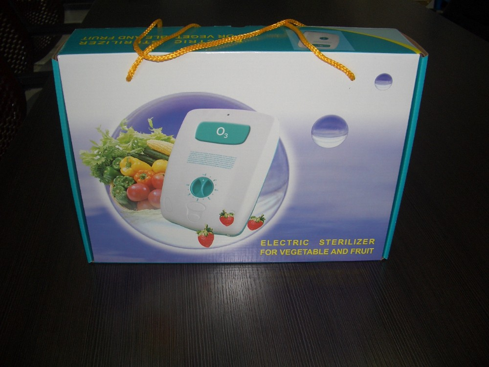 Home & kitchen used 500mg/h ozone generator for fruit and vegetables---BL-2000(O3)