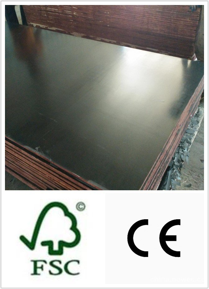 WBP Glue Black Film Faced Plywood 18*1220*2440mm
