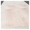 Good Quality Commercial Plywood Made In China