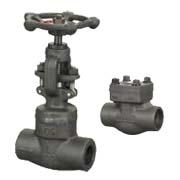 forged steel valve