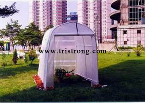 Greenhouse, Hothouse, Garden Shed (TSU-162G)