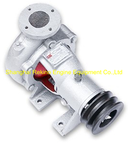 8N17-94-000 N17-94-000 Sea water pump Ningdong engine parts for N170 N6170 N8170