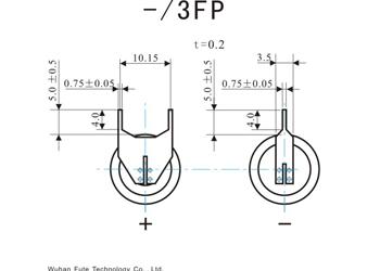 3FP.jpg
