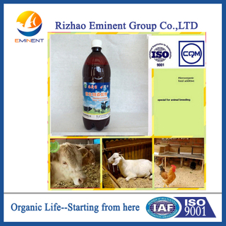 Seaweed bio Microbial Agent for animal breeding