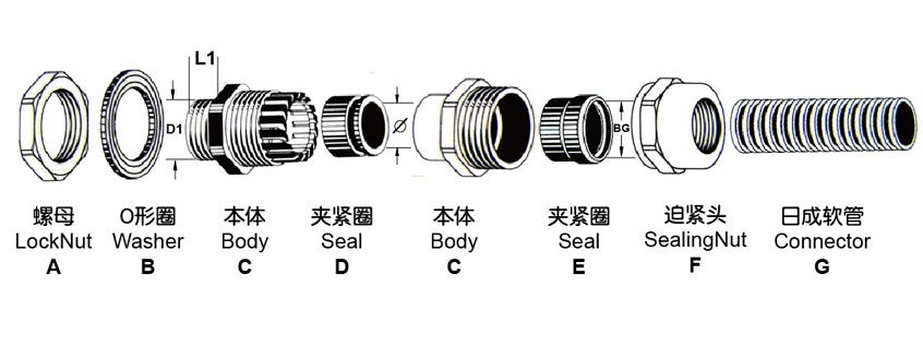 Brass Type Locked Type Pipe Connector