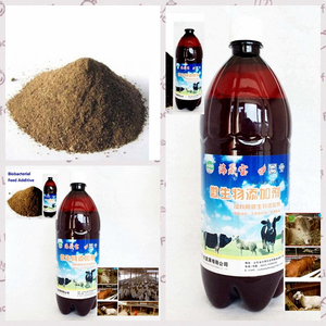 -algal organic feed additive- bio bacterial inoculant