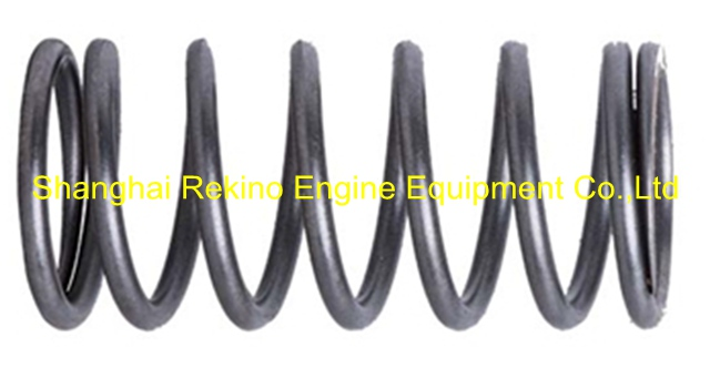 210-51-002 plunger Spring Zichai 210 engine parts