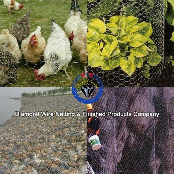 chicken hexagonal wire mesh / hexagonal chicken mesh