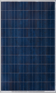 Factory Price Poly Solar Panel 250W
