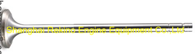 N21-01-019A intake valve Ningdong engine parts for N210 N6210 N8210