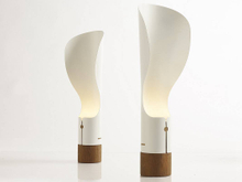 Particular design special shape mental wood table lamp for reading room
