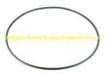 230.116.04 O ring Guangchai marine engine parts 230