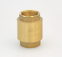 Check Valve Spring type Italy model brass