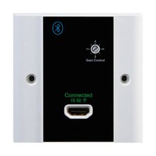 1 In 1 Out HDMI Output Wallplate(HD1424BT)