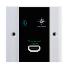 1 In 1 Out HDMI Output Wallplate(HD1324BT)