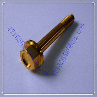 Ti gold anodized bolts
