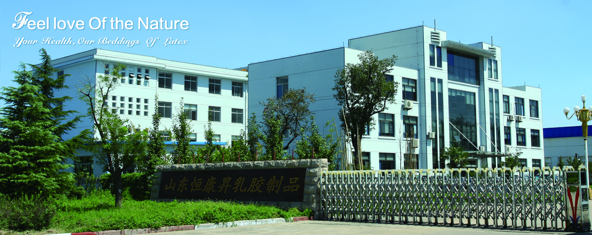 Shandong Everhealth Latex Products Co.,Ltd.