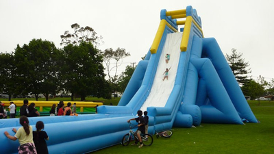 Largest Inflatable Hippo Water Slide for Adult