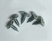 Phillips Truss-Head Self-Tapping Screw