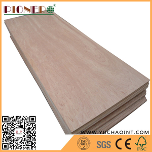 Door Size Plywood with Top Quality