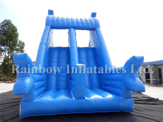 RB6085(10x4m)Inflatable Commercial Water Slide,Giant Inflatable Water Slide For Kids And Adult