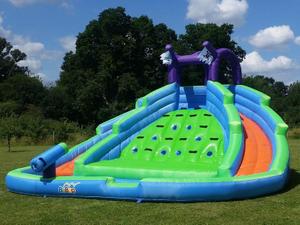 Party Rental Professiona Water Slide