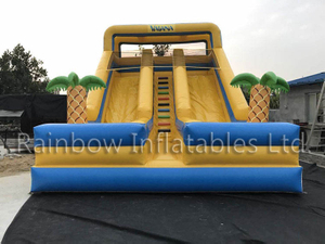 RB6090 (8x5x7m) Inflatable The theme of romance dry Slide