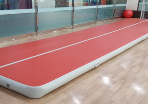 Gym Tumble Track for Sale Inflatable Air Track Mats