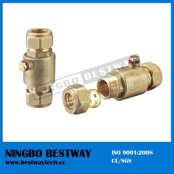 Ningbo bestway brass check valve with strainer bw c