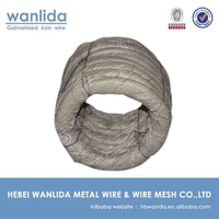 China Supplier Annealed 22 G Galvanized Wire ( Q195 )