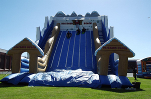 Inflatable Hippo Slide for Sale Inflatables Waterslides