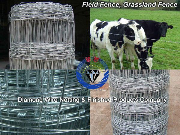 deer field fence/deer fence netting(Factory)
