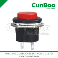 R13-507 momentary push button switch