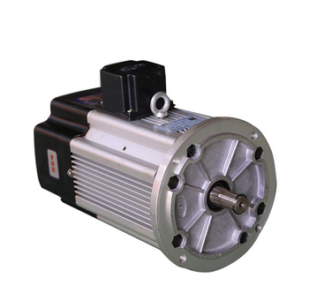 Double Speed Crane Travel Motor