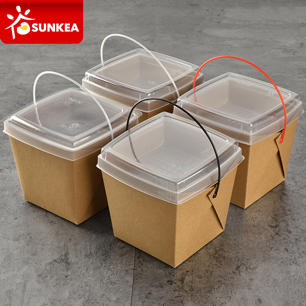 Disposable takeout plastic handle food paper container with dish