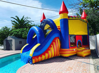 Home Use Backyard Inflatable Water Castle Slide