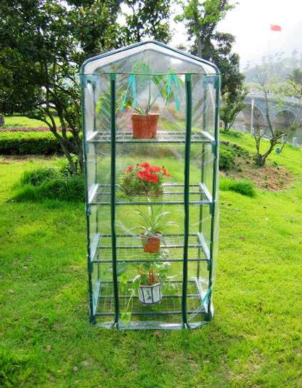 Hot Sales Iron Steel Frame Clear PE Plant Flower Green House