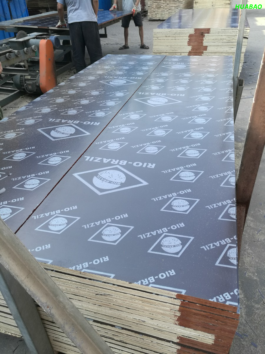 20MM Brich Core Film Faced Plywood AAA Grade
