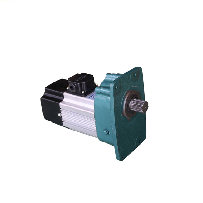 Hoist Lift Motor with Reducer