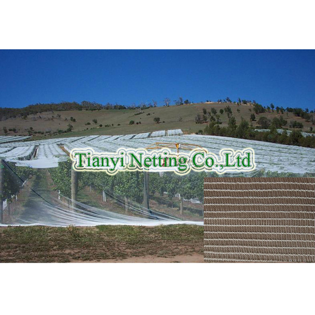 HDPE 55gsm white color anti bee net